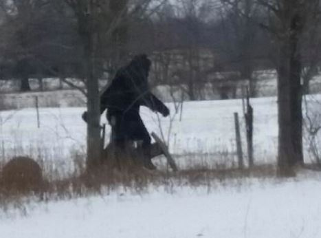 O look here's Bigfoot spotted taking an afternoon stroll in Lorain County