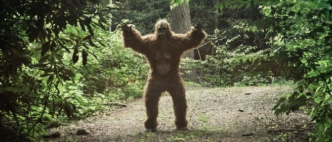 This Is 100000% Real Audio Of A Bigfoot In Cuyahoga Valley National Park