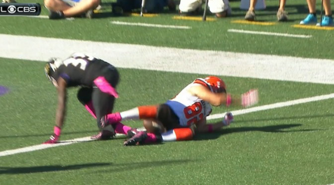 Gary Barnidge Made The Catch Of The Year With His Ass