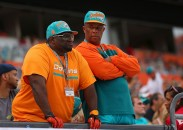 MIAMI GARDENS, FL - DECEMBER 29: Miami Dolphins fans looks on during a game against the New York Jets at Sun Life Stadium on December 29, 2013 in Miami Gardens, Florida. (Photo by Mike Ehrmann/Getty Images)